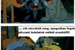 Search_Meme_123