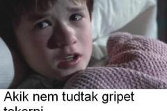 Search_Meme_5