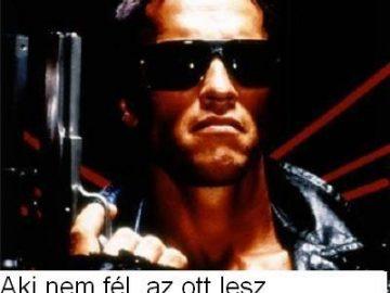 Search_Meme_#16